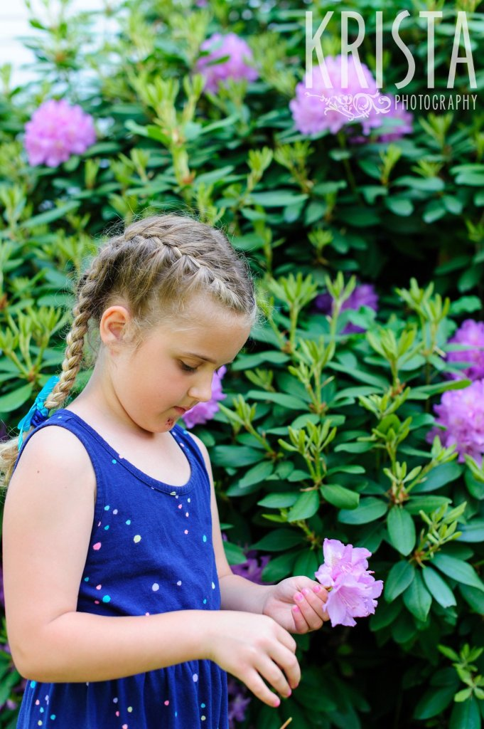 little girl with french braids picking purple flowers off of bush during springtime mini portrait sessions in New England