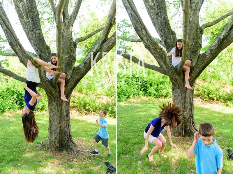 kids climbing in tree and goofing around during spring mini portrait session