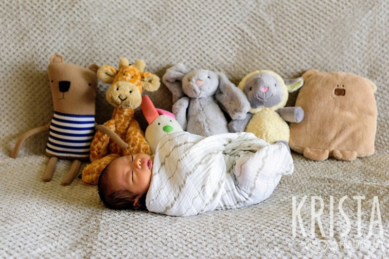 swaddled newborn baby boy in front of several stuffed animals during lifestyle portrait session in the family home