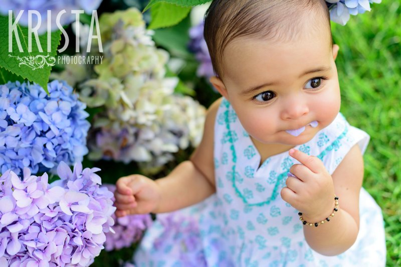 gorgeous brown eyed baby girl in turquoise patterned dress eating hydrangeas during lifestyle portrait session on Cape Cod