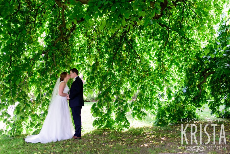Time for a kiss under the willow tree at St. Anselm College. © 2016 Krista Photography - www.kristaphoto.com