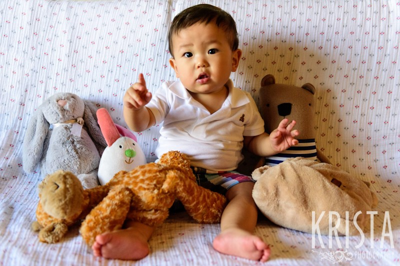 Little boy with his stuffed animals. One Year Portraits, First Birthday. Boston Family Photographer, Krista Guenin. © Krista Photography - www.kristaphoto.com